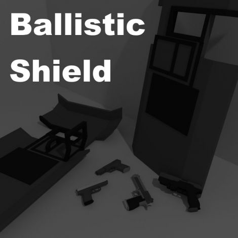 Ballistic Shield & Pistol