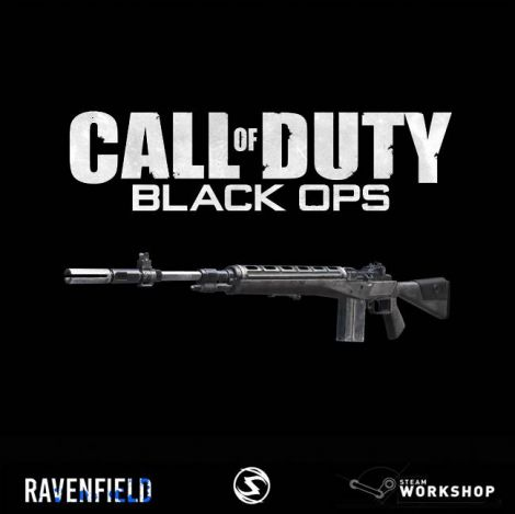 Call of Duty: Black Ops M14