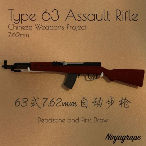 Type 63 Assault Rifle